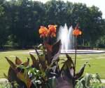 Sonstiges/838/blumen-sind-ein-guten-tag-der Blumen sind ein 'Guten Tag' der Natur