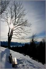 Winter/117206/winterpause-auf-dem-les-pliades20012010 Winterpause auf dem Les Pléiades. (20.01.2010)