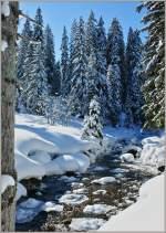 Winter/173173/mit-diesem-foto-wuenschen-wir-allen Mit diesem Foto wünschen wir allen besinnliche Weihnachten und ein gutes neues Jahr 2012. (15.02.2010)